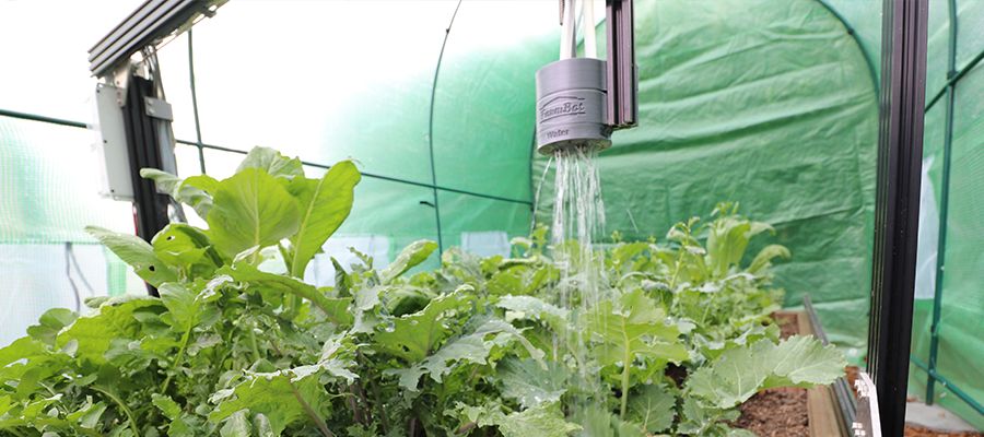 Farmbot device watering crops